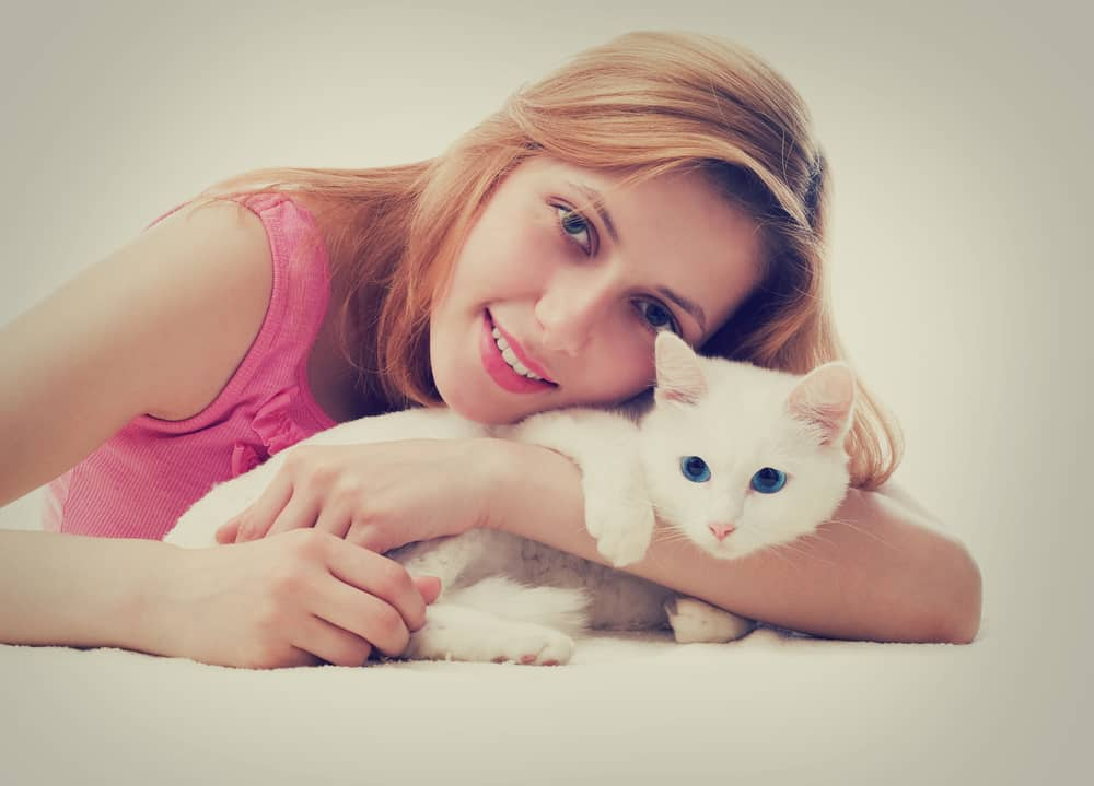 amazing facts about cats